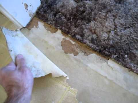 How To Remove Old Linoleum  YouTube