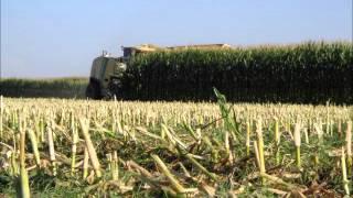 Diamond J Farms Video