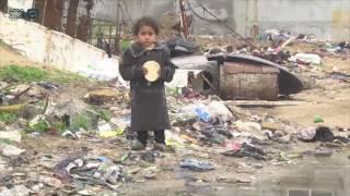 مصر العربية | غرق منازل في غزة جراء الأمطار الغزيرة