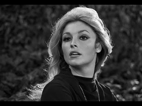 Unknown Surprising Facts About Sharon Tate  Pastimers
