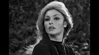 Unknown Shocking Facts About Sharon Tate || Pastimers