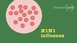 How to Prevent & Recognize Symptoms of Swine Flu