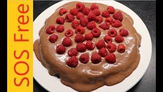 Raspberry Chocolate Cake | Gluten Free | WFPB | Vegan | No Salt/Oil/Sugar | Dairy Free | Egg Free