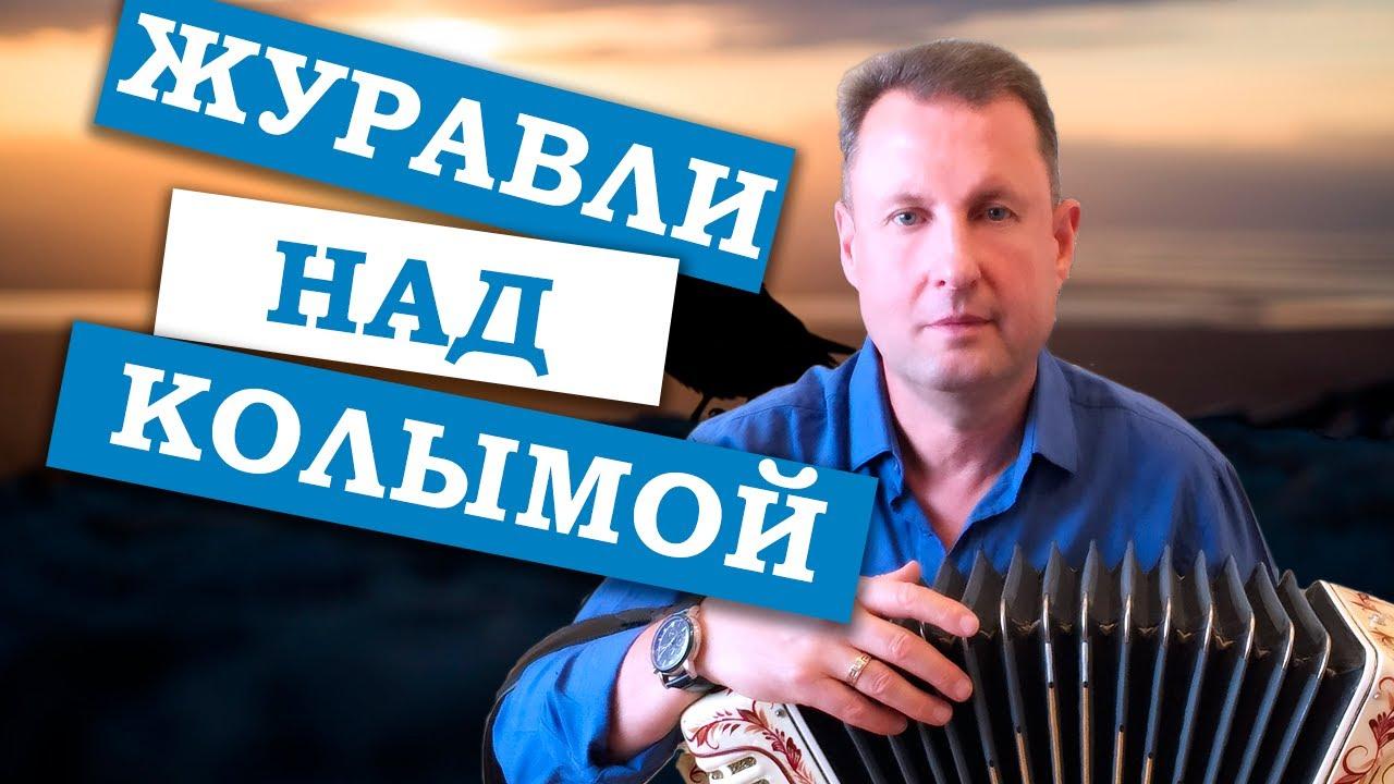 Паша гармонист - Журавли над Колымой