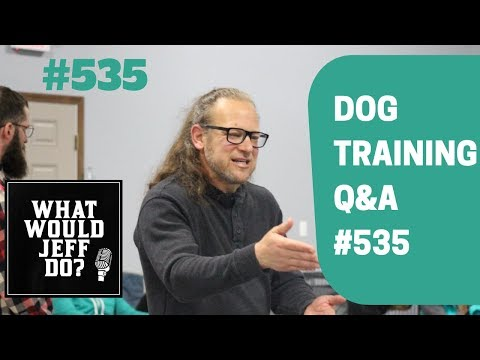 Stop dog whining | Puppy training tips | What Would Jeff Do? Dog Training Q & A #535