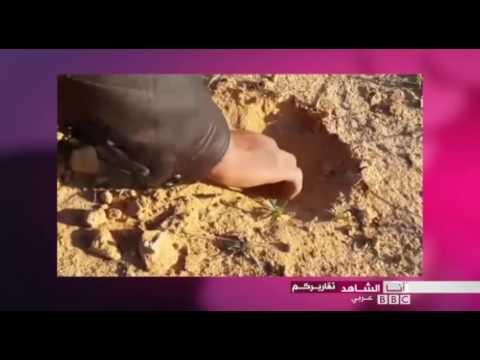 أنا الشاهد: -الترفاس- لحم الصحراء في ليبيا  - نشر قبل 19 ساعة