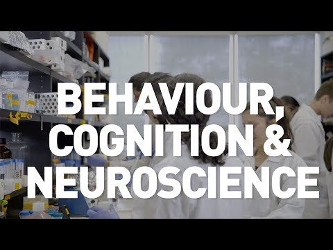 Behaviour, Cognition & Neuroscience - Undergraduate Program