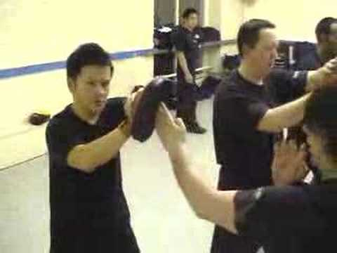 Download Kevin Chan Cross Training and Wing Chun