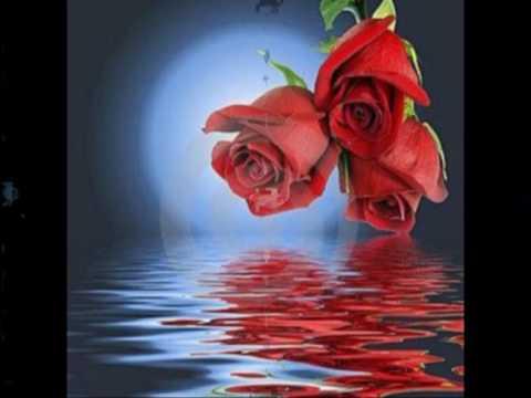 Halo beyonc raccolta immagini d 39 amore youtube for Immagini natalizie d amore