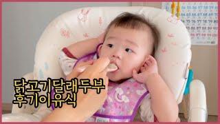 VLOG육아일상:10개월아기 후기이유식 시작! 닭고기달…
