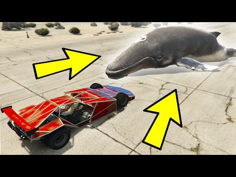 CAN A RAMP CAR FLIP A WHALE? (GTA 5)