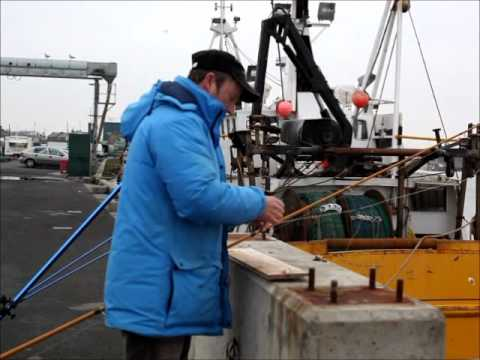 A Fishing Competition At Amble
