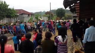 carnaval pisaflores 2014