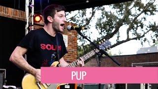 Pup @ The Fest 15