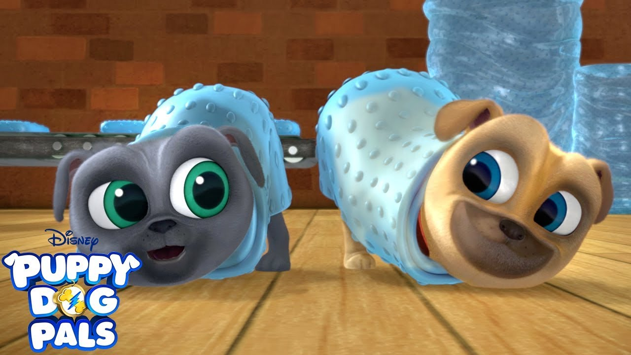Bubble Wrapped Music Video Puppy Dog Pals Disney Junior Youtube