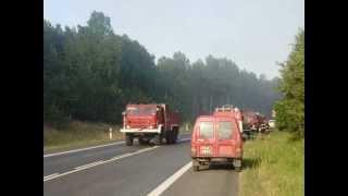 Pożar lasu Piła
