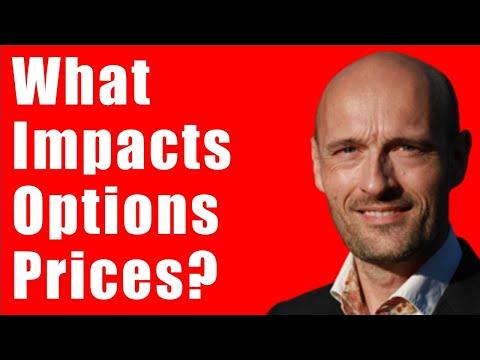 Factors That Impact Option Prices