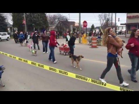 Ida, Michigan Holiday Hounds Christmas Dog Parade 2015