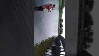Сом на реке Рыча.