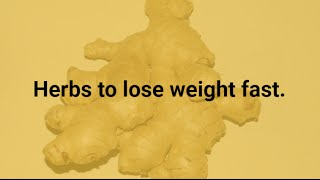 Herbs to lose weight fast