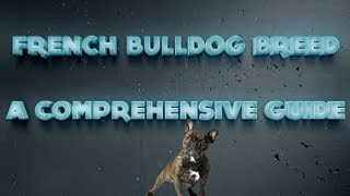 Training French Bulldogs | Tutorial Review Free Bonus