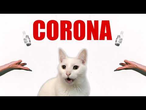 Meow CORONA - Coronavirus Cat Parody
