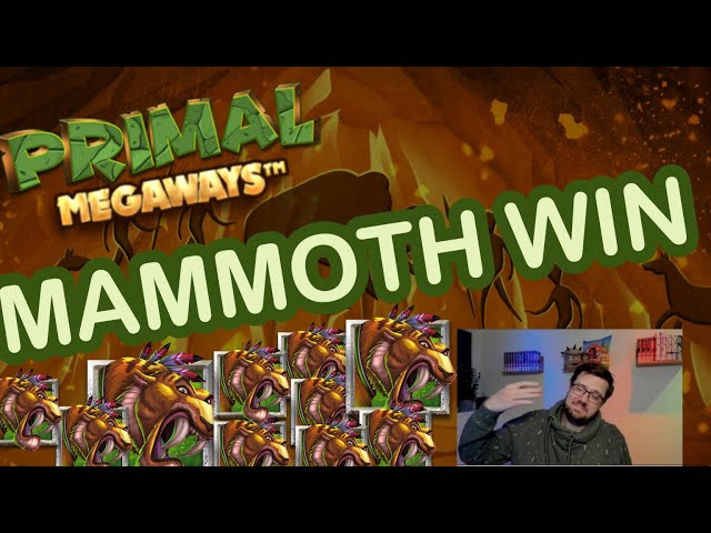 Tigers baby! Mammoth win on Primal!