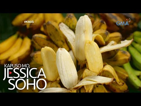 Kapuso Mo, Jessica Soho: Aba, aba, saging na saba!
