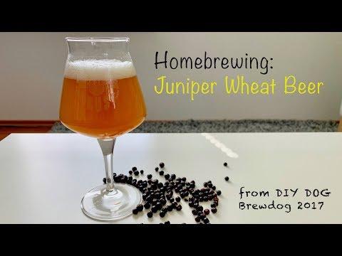 Juniper Wheat Beer, home brewing, DIY DOG Brewdog 2017 recipe (HD)