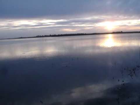 Сибирская рыбалка. Алтай. Соленое озеро. Карп. - YouTube