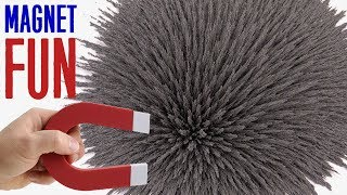 Magnet + Iron filings = Fun Magic & Satisfying Experiment