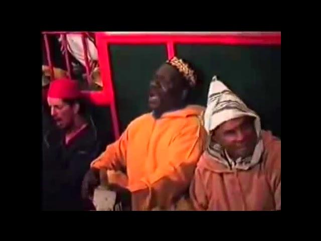 TUSK TV April 2021 - Hive Mind Mix
