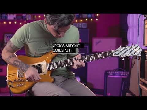 Eastwood Wolf Guitar - Jerry Garcia Grateful Dead Tribute Model (New Demo)