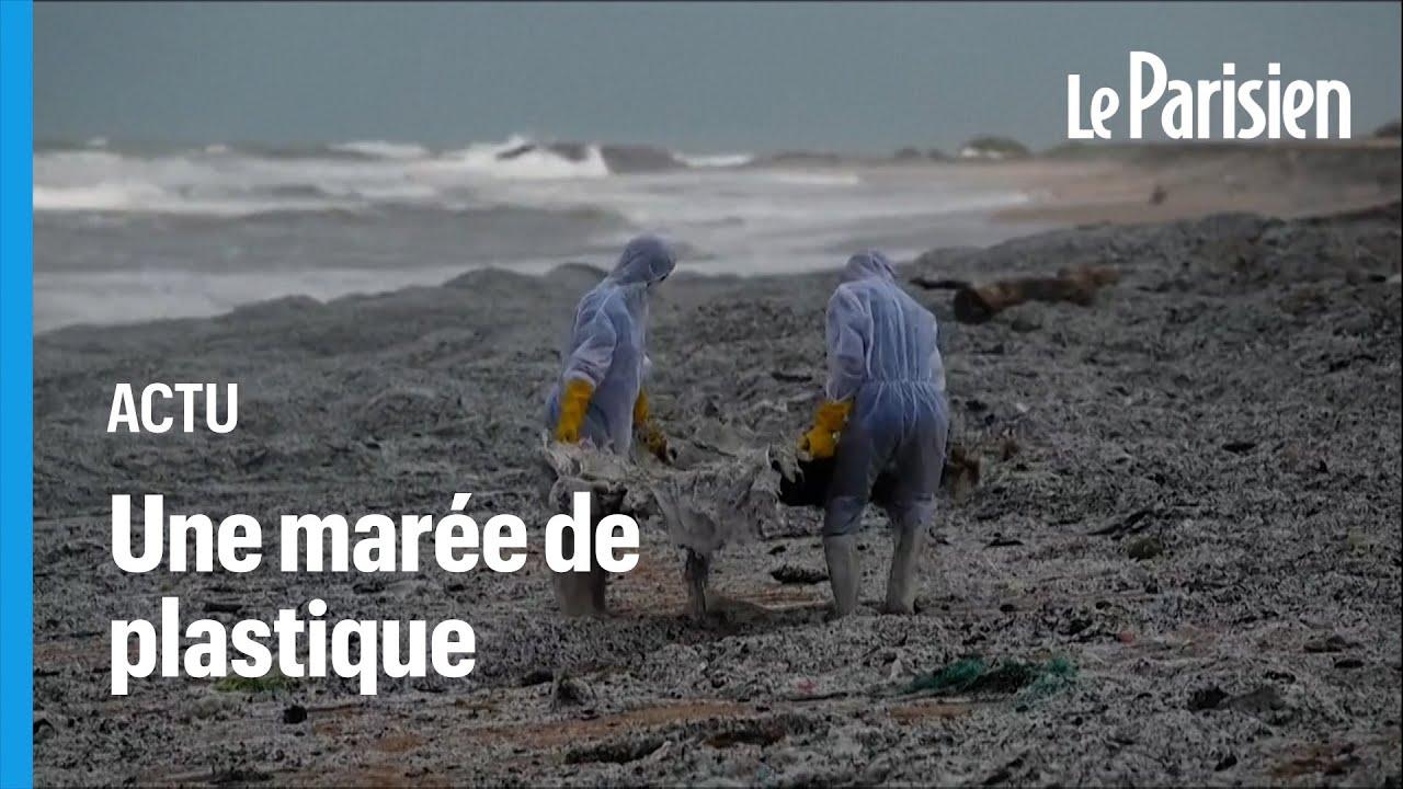 Download Sri Lanka : une marée de plastique sur les plages après l'incendie d'un porte-conteneurs