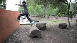 Hawk Flight Parkour