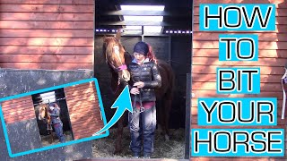 HOW TO BIT A HORSE || HOW TO PUT A BIT IN HORSES MOUTH FOR THE FIRST TIME