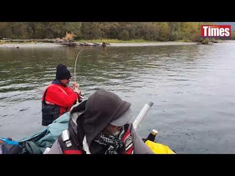 Nepalis go salmon