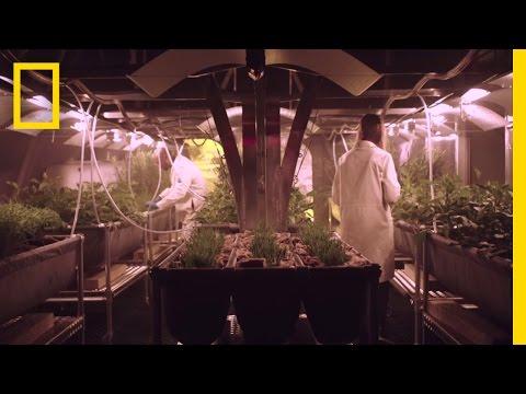 Growing Food on Mars | MARS: How to Survive on Mars