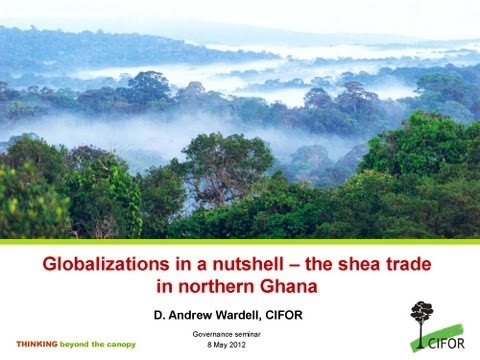 Globalizations in a nutshell -- the shea trade in northern Ghana