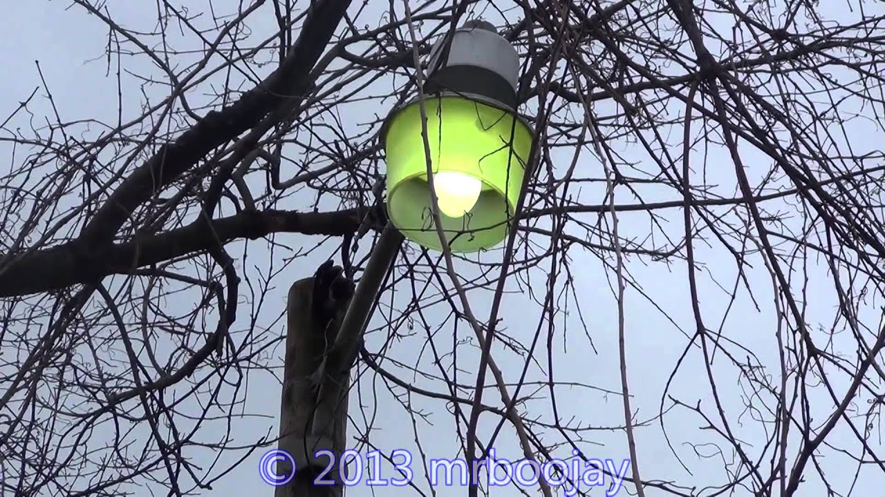 Mercury Vapor NEMA Light Warming up  HD  YouTube
