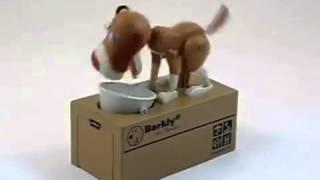 Para Yiyen Köpek Kumbara-Sihirlipencere.com