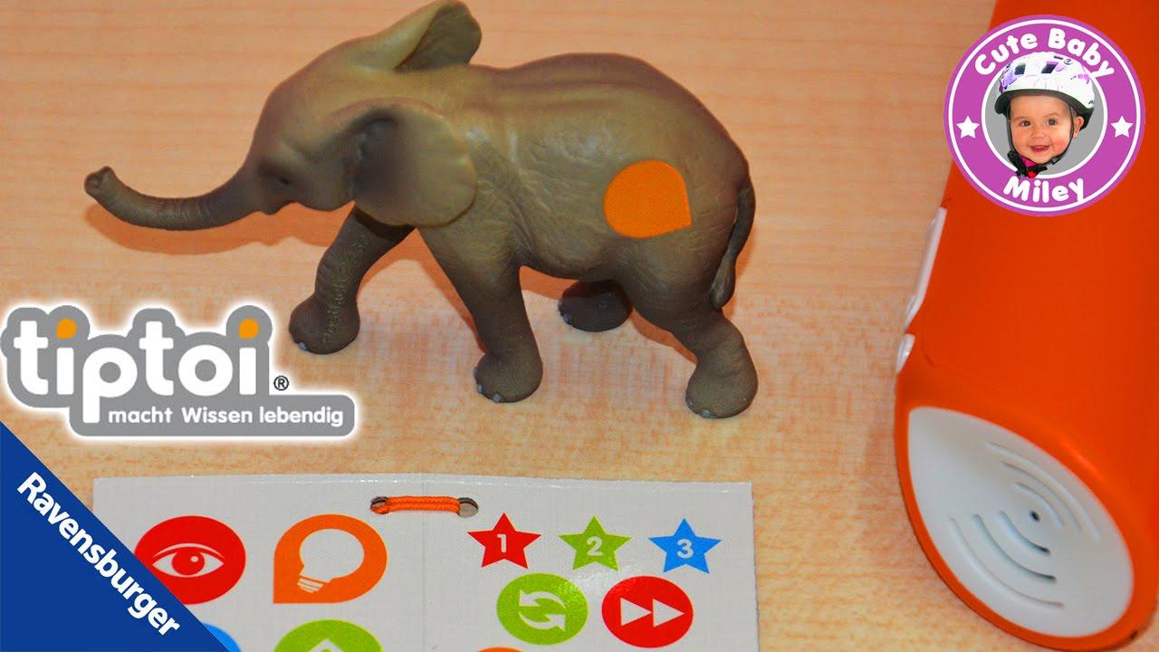 tiptoi tiere ravensburger kleiner elefant baby youtube. Black Bedroom Furniture Sets. Home Design Ideas