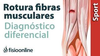 De tensión en pierna de tratamiento la la parte inferior