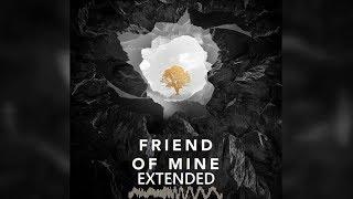 Avicii ft. Vargas & Lagola - Friend of Mine Extended