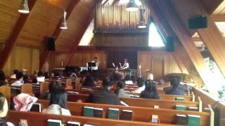 The Swan- Saint-Saens- Marimba and Violin