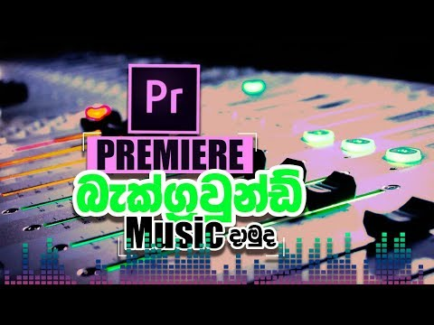 How To Add Background Music With Keyframes | Premiere Pro In Sinhala EP03