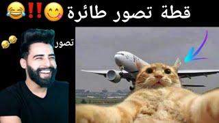 قطة تصور  طائرة سيلفي #ناز_رياكشن