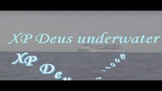 XP Deus underwater  - XP Deus под водой