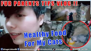 Alternate Healthy Food For My Cats | VLOG TIPS !! | Bhien De Castro