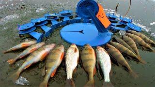 ПЕРВЫЙ ЛЁД Зимняя рыбалка как это было Река Угра